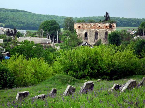 Синагога со стороны старого еврейского кладбища